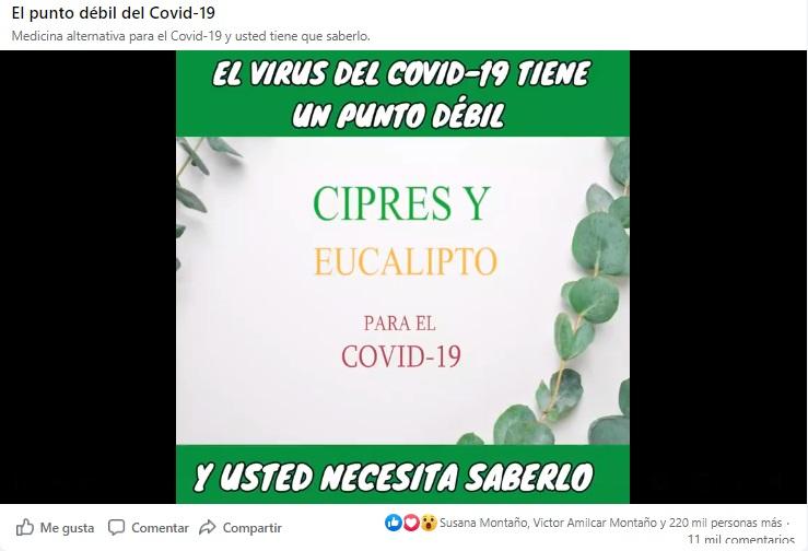 Usar vapor de ciprés y eucalipto como tratamiento contra el COVID-19 no tiene sustento científico